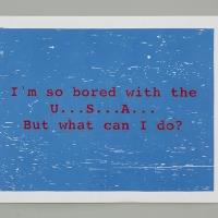 http://www.nilskarsten.com/files/gimgs/th-13_13_boredusaweb.jpg