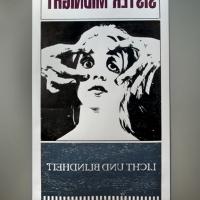 https://www.nilskarsten.com/files/gimgs/th-13_13_sister-midnight-traci.jpg