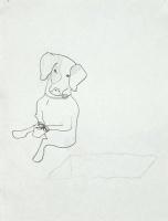 http://www.nilskarsten.com/files/gimgs/th-21_21_poor-dogweb_v2.jpg