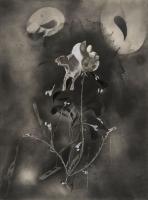 http://www.nilskarsten.com/files/gimgs/th-32_5_5_black-flower-5.jpg